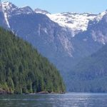 Pitt Lake Wilderness Tour