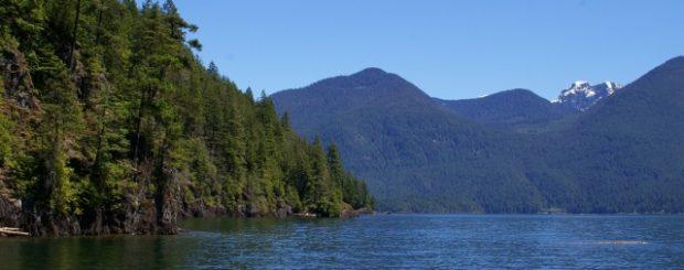 pitt lake nature cruise