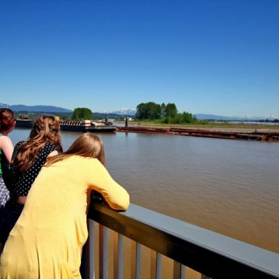 Fraser River cruising on the Paddlewheeler